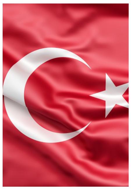 دپارتمان زبان ترکی استانبولی